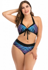 Women Fashion Plus Size Print Bikini Set